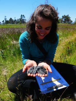 Hannah Konkel '20 with tree swallow fledglings