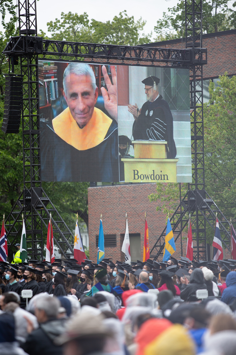 Fauci on the screen
